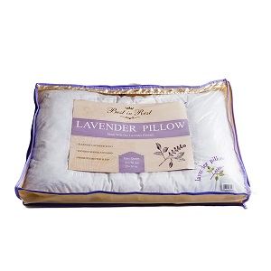 CPAP-Clinic Accessories : # 461227 Lavender Pillow by Best In Rest