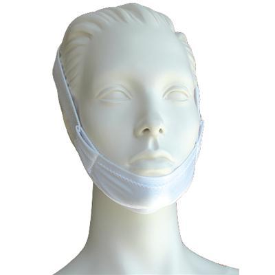 Philips Respironics Accessories 302175 Regular Chin